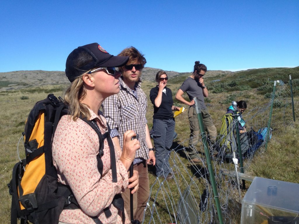 Heidi, Christian and Nell visiting the long-term field site in Greenland before the workshop