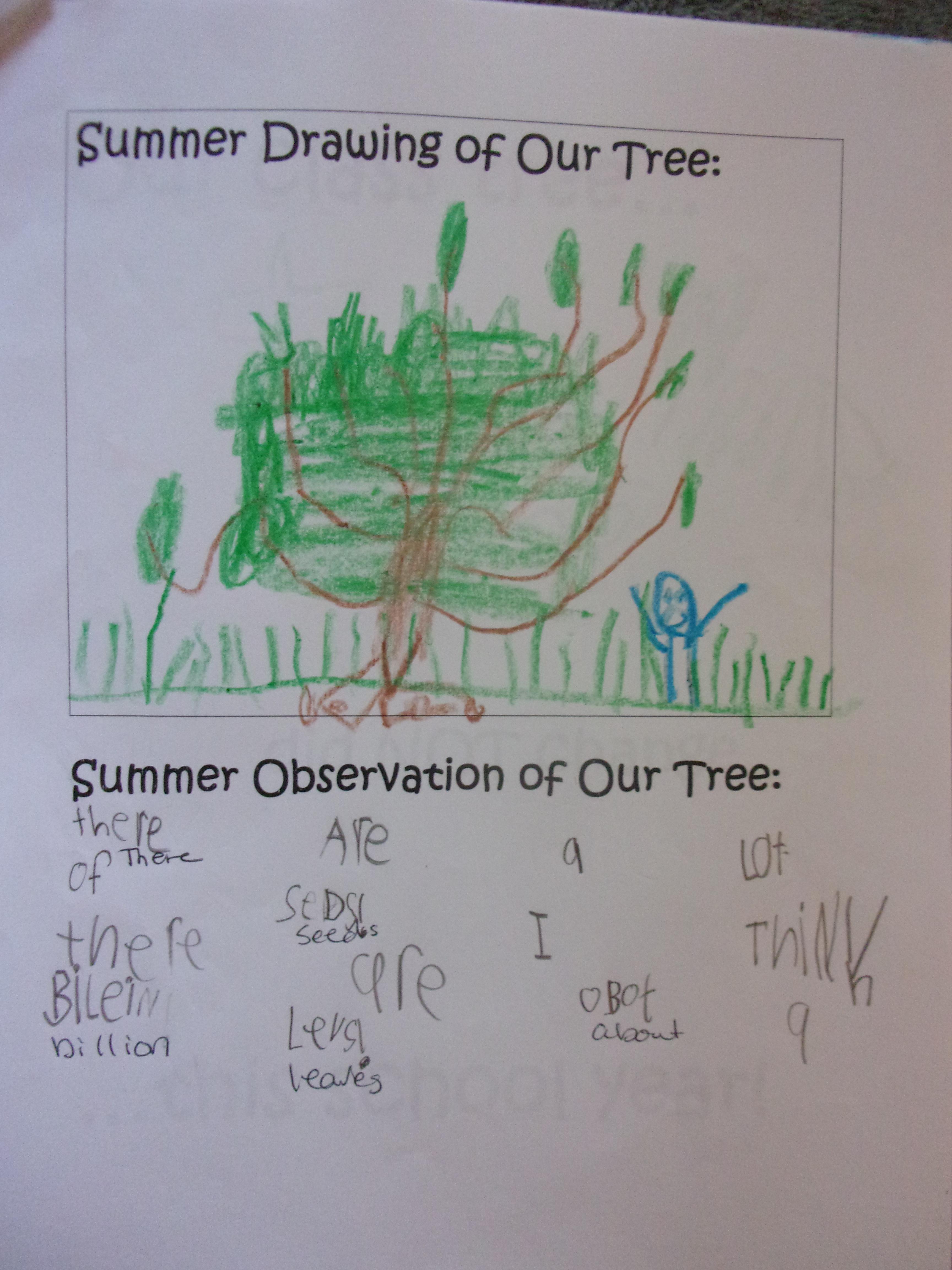 Summer Journal 2